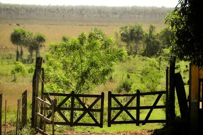 El Chaco; Una opción turística para los amantes de la naturaleza
