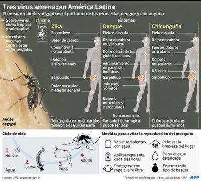 Infectólogo afirma que hay condiciones para que aparezca el zika en Asunción