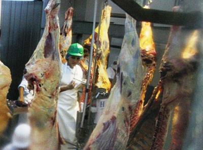 Carne paraguaya apunta a conquistar el Golfo a través de Qatar