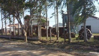 Locomotoras del ferrocarril de Puerto Casado serán restauradas