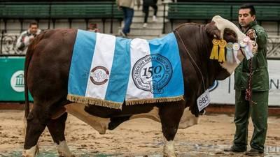 Argentina: Las dos razas que más crecieron coronaron a sus campeones