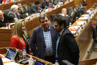 Toma impulso en Diputados el proyecto Tuma para la enmienda