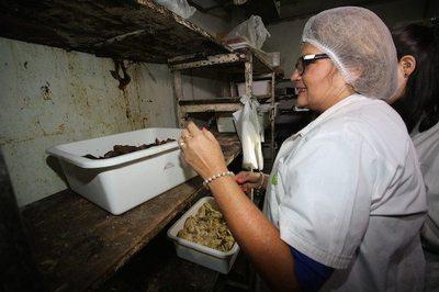 Otras empresas piden servicio contra las ratas y cucarachas
