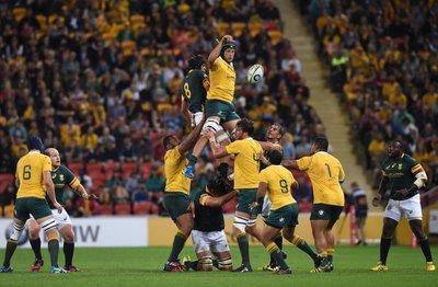 Australia se impone a los Springboks