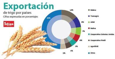 Aumento en las exportaciones de trigo generó buenas expectativas
