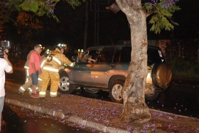 Conductor choca contra un árbol de paseo central