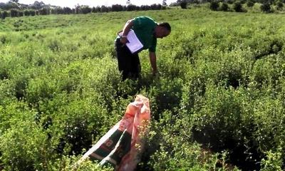 En Itapuá agricultores de ka'a he'e recibirán asistencia técnica del MAG