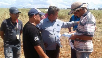 Guahory: FNC pide 10 ha para cada familia