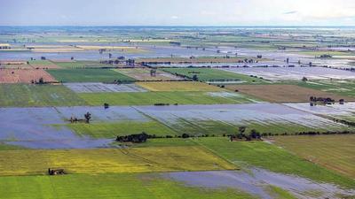 Inundaciones dejan millonaria pérdidas en provincia argentina de Santa Fe