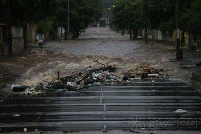 Retiraron 18.000 kilos de basura en calles asuncenas