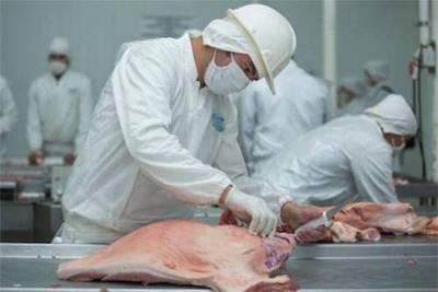 """Apuestan por """"turismo ganadero"""" para aumentar ventas de carne"""