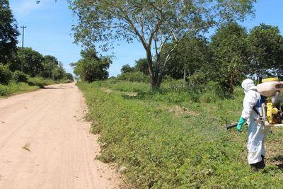 Senave combate focos de langostas en el norte del Chaco Paraguayo