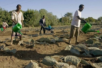 FAO advierte que la hambruna amenaza a zonas con conflictos civiles