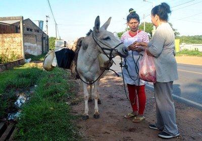 La burrerita paraguaya que resiste el paso del tiempo