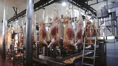 La crisis de la carne en el Brasil y su impacto en el Paraguay