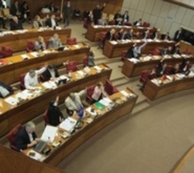 Diputados sepultan la enmienda