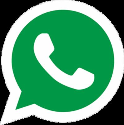 Cancilleres debaten por WatsApp el caso Venezuela