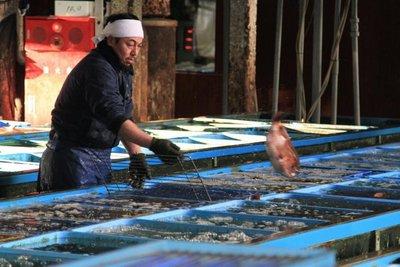 Tokio: Legendario mercado de pescado tiene los días contados