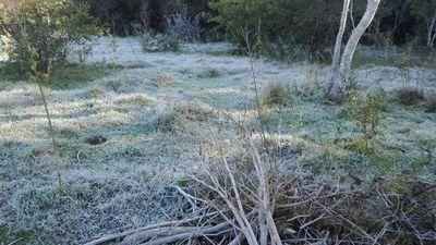 Anuncian sensación térmica menor a los 0ºC en varias zonas del país