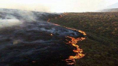 Incendio forestal en Bolivia dañó a más de 10.000 hectáreas
