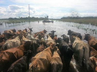 Destacan utilidad del sistema de alerta temprana de precipitaciones
