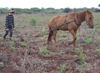 Campesinos lamentan abandono del Gobierno