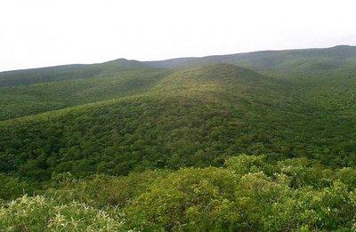 Cerro León, un diamante en bruto