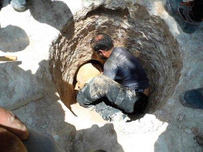 Hallan sapos de 4.000 años de antigüedad