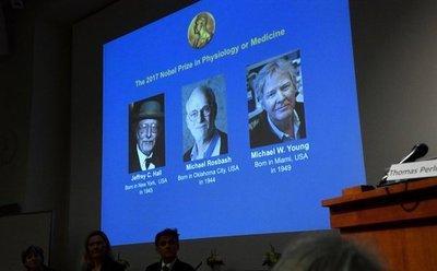 Estadounidenses recibirán Nobel de Medicina
