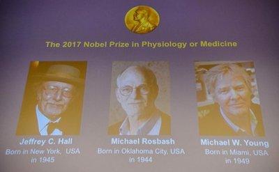 """Tres estadounidenses, Nobel de Medicina por estudios del """"reloj biológico"""""""