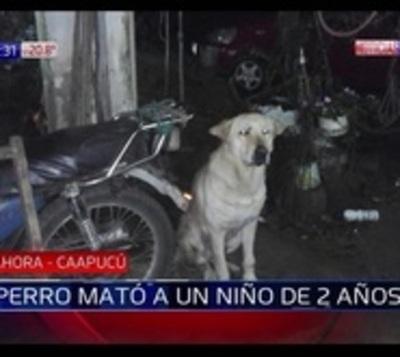 Perro mató a un niño de 2 años en Caapucú