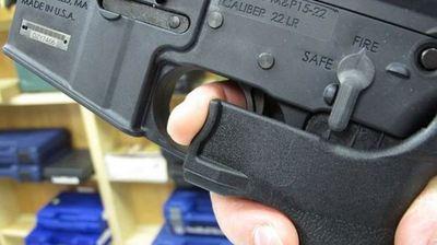 Oficialistas abrirían debate sobre regulación de armas
