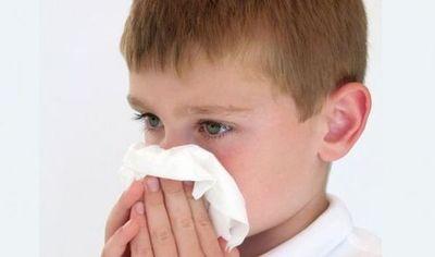 Pandemias de gripe son más probables en primavera y verano