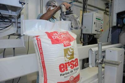 Industria harinera en busca de su evolución