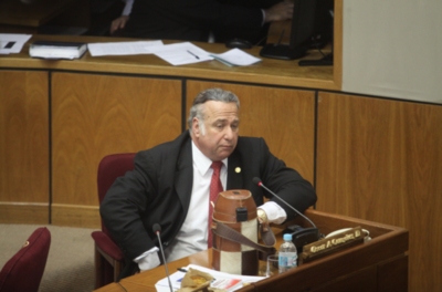 Sesión extra en Senado para tratar caso González Daher