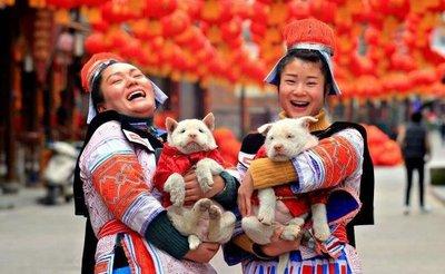 China recibe el Año del Perro con explosión de color y espiritualidad