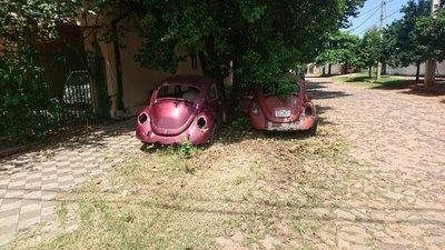 Autos abandonados cerca de municipio