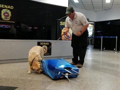 Mujer es detenida con cocaína en aeropuerto Silvio Pettirossi
