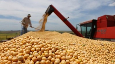 Exportación de soja muestra crecimiento de 6% a marzo