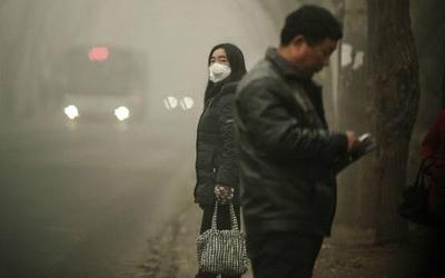 OMS: Nueve de cada diez personas respiran aire contaminado