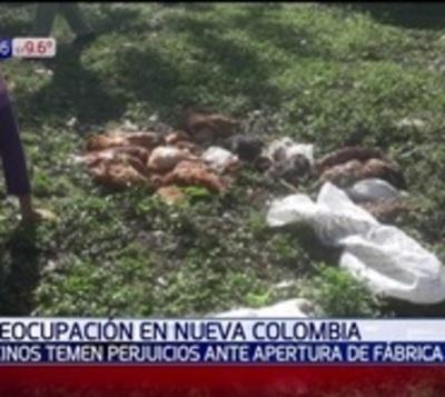 Preocupante muerte de animales por presunta contaminación