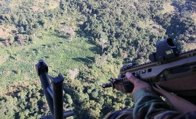 HOY / Operativo de la SENAD culmina con destrucción de más de 400 tn. de marihuana