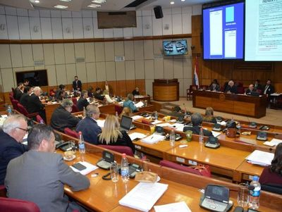 Senadores aprueban notas reversales de Yacyretá