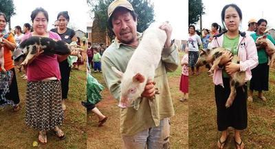 Aplican proyecto de producción de animales en dos localidades