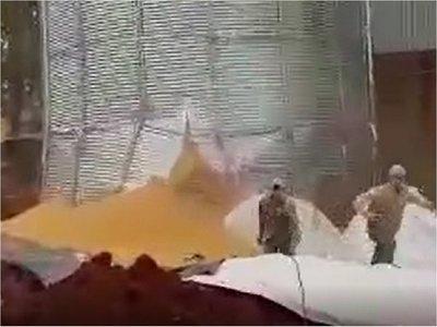 Caaguazú: Silo se derrumba y casi aplasta a obreros