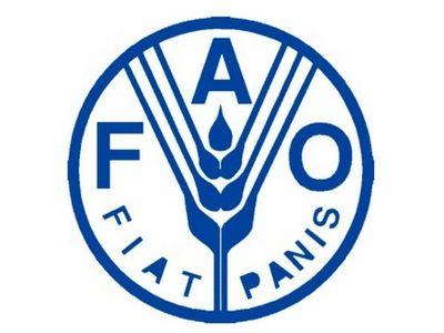 Aseguran que nuevo Gobierno tomará agenda de la FAO para agricultura sostenible