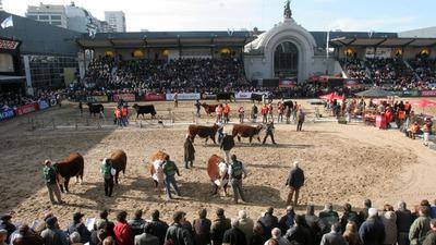 Comenzó la Expo Palermo en Argentina