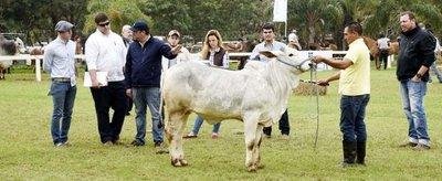 Se destaca la cantidad y calidad de los animales que participaron en la Expo
