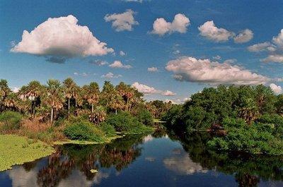 """Pretenden que el Pantanal sea declarado """"Patrimonio Mundial"""""""