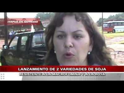 LANZAN DOS VARIEDADES DE SOJA ORIENTADA AL PEQUEÑO PRODUCTOR